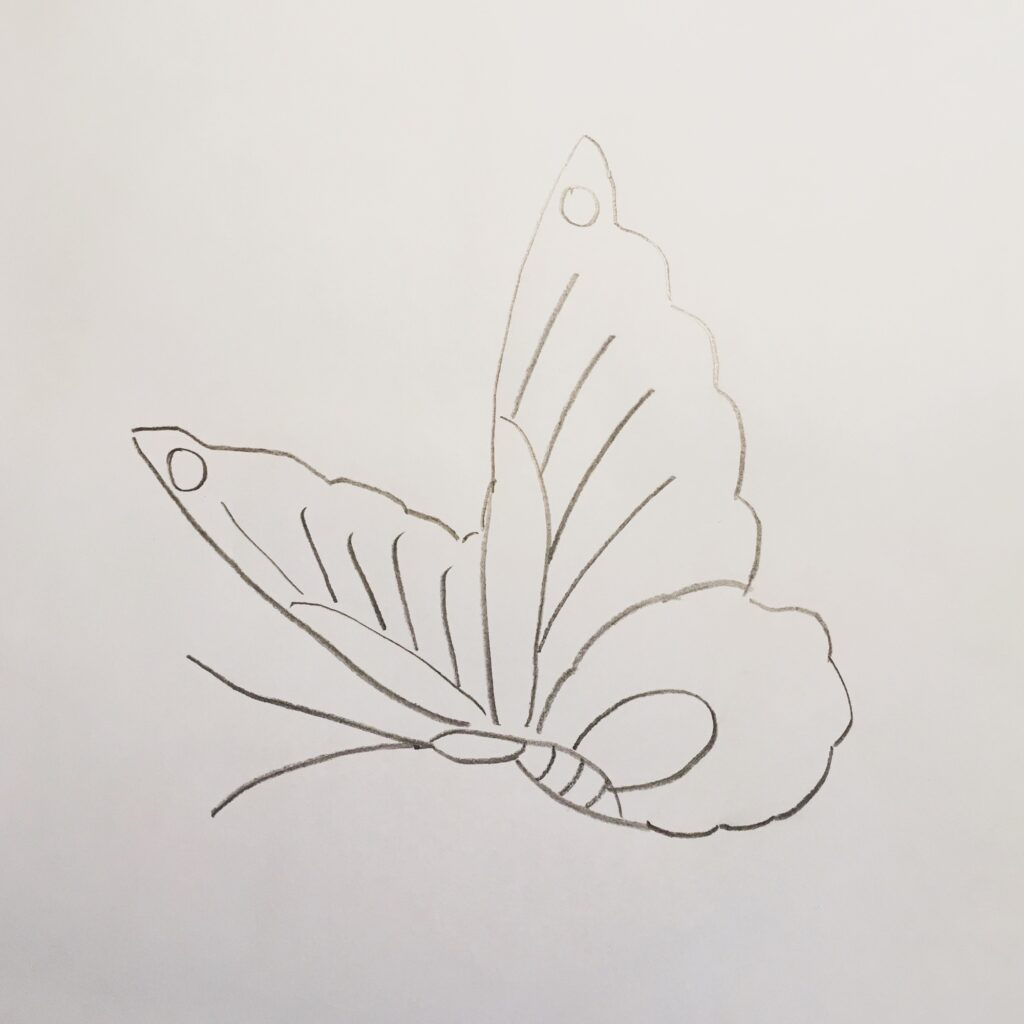 Sketched Butterfly
